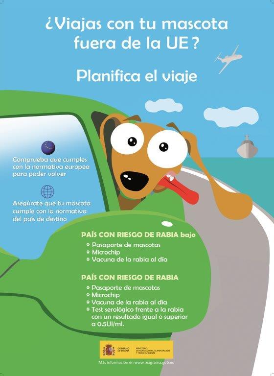 recomendaciones-para-viajar-con-mascotas